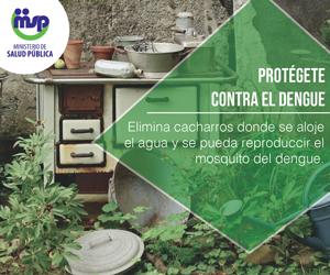 Ministerio de Salud - Campaña Prevención Dengue